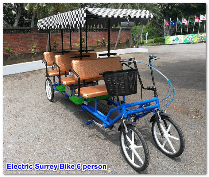 Six Person Electric Tourist Cart