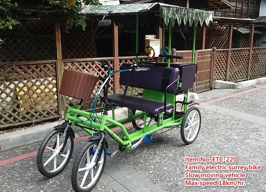 Family bicycle with electirc motor