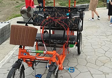 Electric Bicycle Tourist Cart 4 person