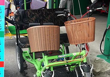 Electric Bicycle Tourist Cart 2 person