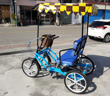Electric Rickshaw for 2 person