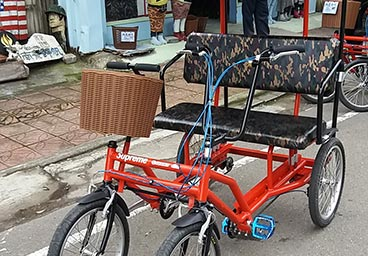 Rickshaw for 2 person